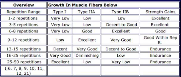 Растеж в мускулни влакна